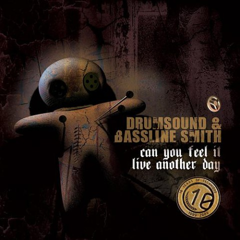 Drumsound & Bassline Smith Can You Feel It